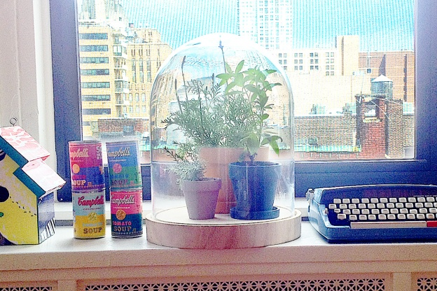 You are not supposed to keep terrariums by a window—experts say this will bake the plants—but I couldn't help but style it this way for the post.